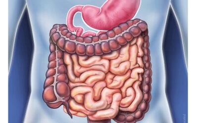 Darmmanagement bei neurogenen Darmfunktionsstörungen